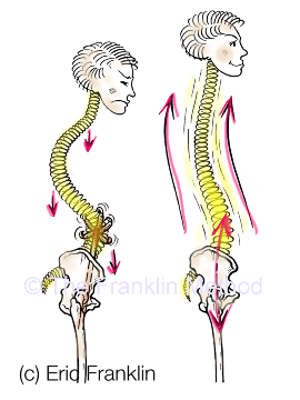 spine franklin method