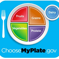 MyPlate vs Healthy Eating Plate
