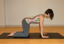 Pilates Cat Stretch Best Practice